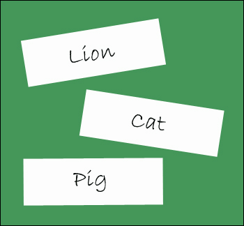 Paper with animal names on them for the animal partner game.