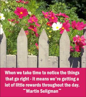 Martin Seligman picture quote on positive attitude.
