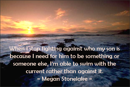 Parenting quote by Megan Stonelake on swimming with the current.