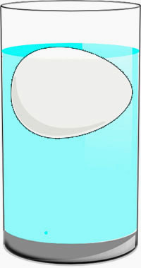 The example of the science project for kids: The floating egg in salt water