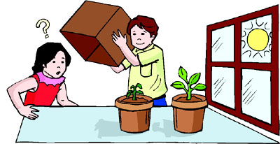 Easy science fair projects for kids: Growing plants in ligth and darkness.
