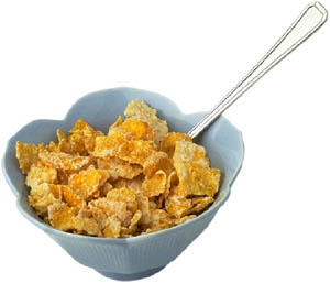 Great activities for toddlers: A bowl of cornflakes for the sensory lab.