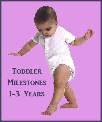 The toddler developmental milestone of walking