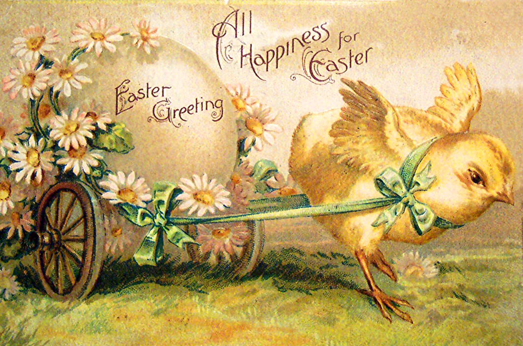 Decorative free Easter postcard with chicken pulling an egg.