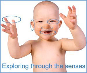 During the first year the senses help reach many milestones: Illustration with baby with circles around the bodily senses.