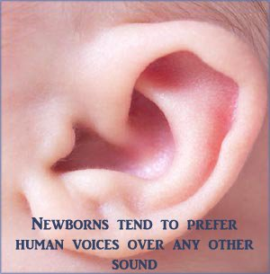 Close-up picture of a baby's ear. Don't hold back on your singing.