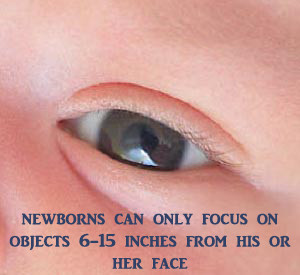 Newborn development of eye sight. Picture of a baby's eye.