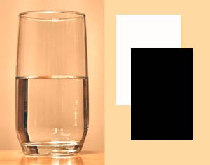 Fun science for kids: Heating up water with sunlight and a black and white piece of paper.