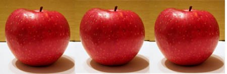 Red apples for the family tree template