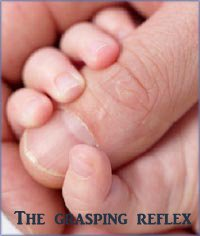 The infant milestone of the grasping reflex. Baby clenching around finger.