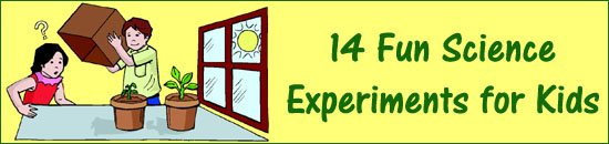 Science experiments for kids - growing a plant