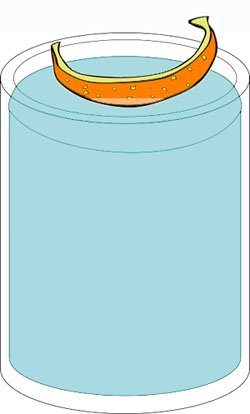 The floating orange peel in a jar of water experiment for kids.