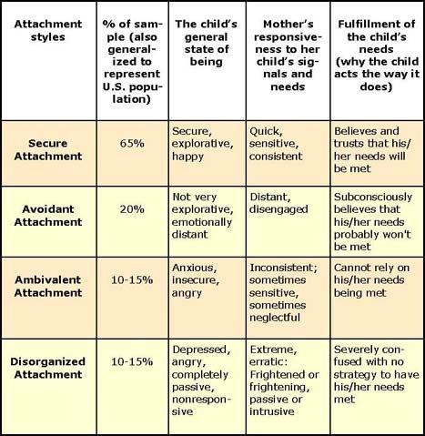 Attachment styles - secure attachment, insecure attachement: avoidant attachment, ambivalent attachment, disorganized attachment
