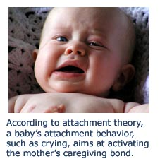 Secure attachment behavior - baby crying